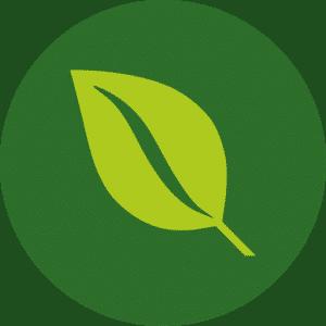 biopoiotita